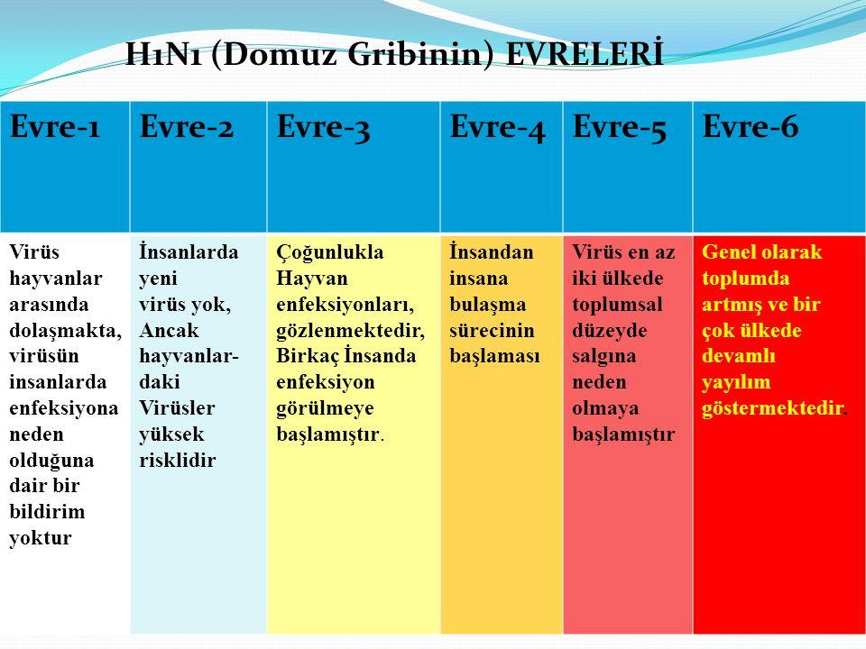 Evre-1Evre-2Evre-3Evre-4Evre-5Evre-6 Virüs hayvanlar arasında dolaşmakta, virüsün insanlarda enfeksiyona neden olduğuna dair bir bildirim yoktur İnsan
