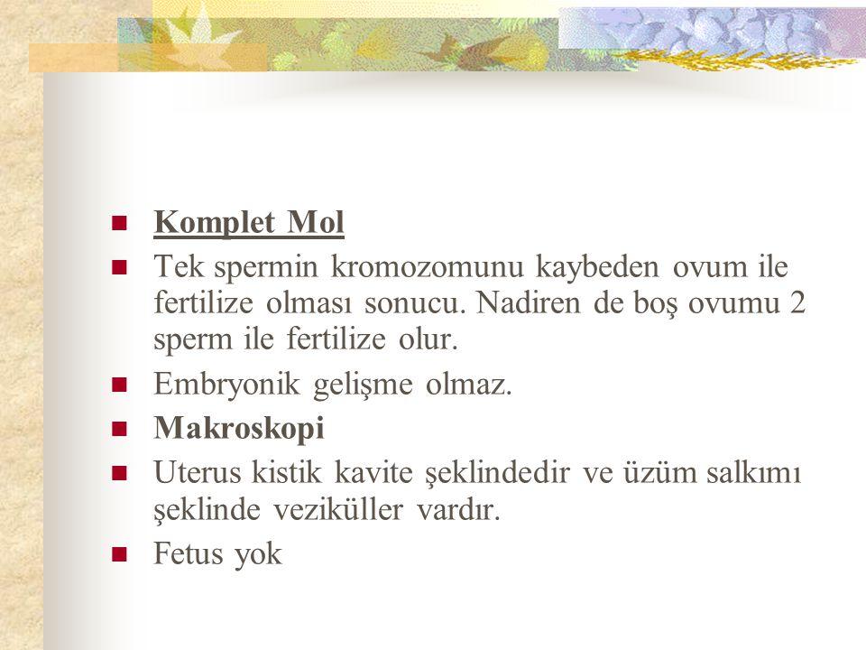 Komplet Mol Tek spermin kromozomunu kaybeden ovum ile fertilize olması sonucu.
