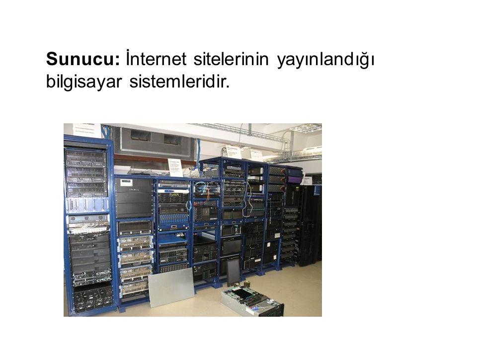 Sunucu: İnternet sitelerinin yayınlandığı bilgisayar sistemleridir.