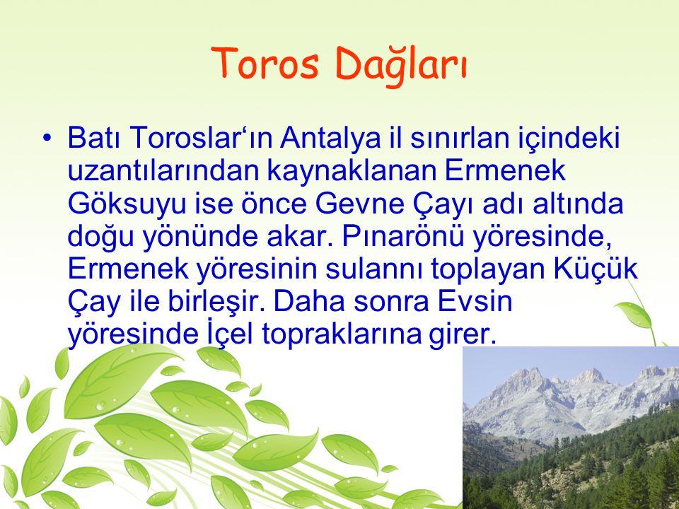 Orta Toros Dağları, İç Anadolu ile Güney Anadolu'yu birbirinden ayıran sistemli sıralar oluşturduğundan, güç geçit verir.