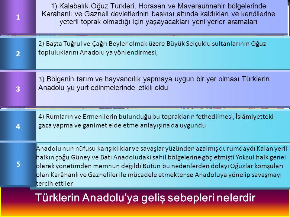 Malazgirt Savaşı ndan sonra ilk Türk devletlerinin birçoğunun Doğu Anadolu'da kurulmasının nedenleri neler olabilir? Türklerin Anadolu'ya geliş sebepl