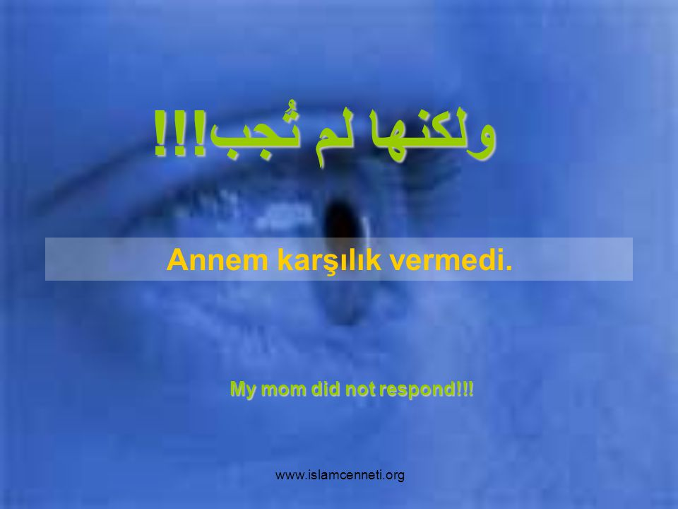 www.islamcenneti.org ولكنها لم تُجب!!! My mom did not respond!!! Annem karşılık vermedi.