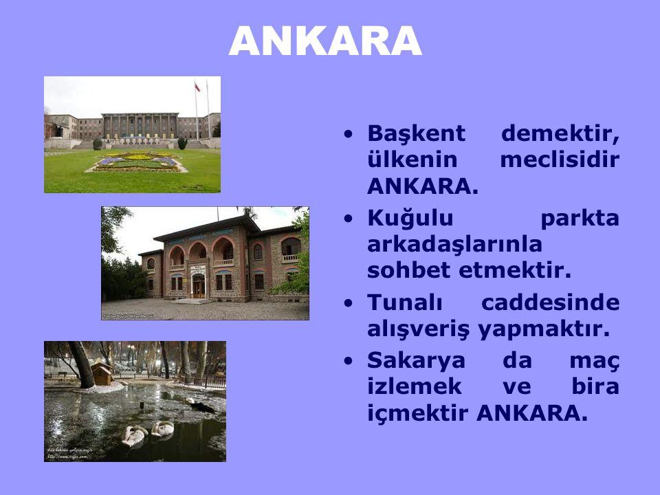 ANKARA O'nu yukarıdan görmek Atakule ve Ankara Kale'si demektir.