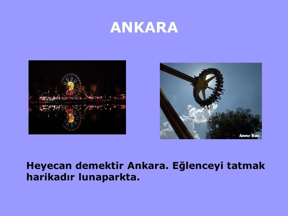 ANKARA Ankara'da deniz demek Mogan, Eymir, Göksu demektir.