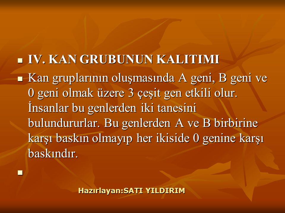 IV.KAN GRUBUNUN KALITIMI IV.