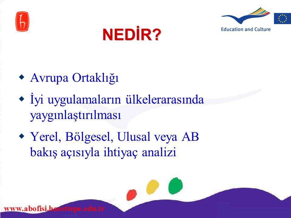 www.abofisi.hacettepe.edu.tr NEDİR?  Avrupa Ortaklığı  İyi uygulamaların ülkelerarasında yaygınlaştırılması  Yerel, Bölgesel, Ulusal veya AB bakış