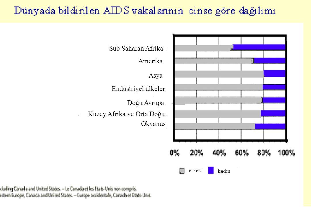 M.Doğanay Bazı Afrika ülkelerinde AIDS vakalarının yaş gruplarına göre dağılımı Yaş grupları