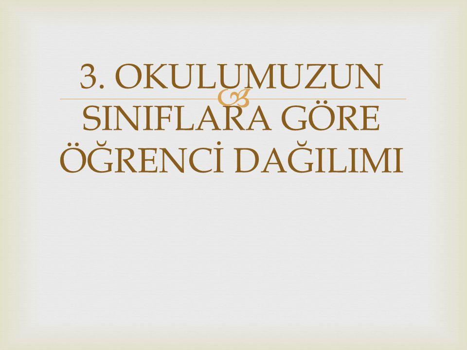  3. OKULUMUZUN SINIFLARA GÖRE ÖĞRENCİ DAĞILIMI