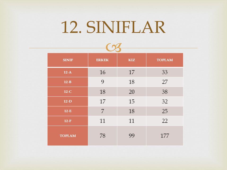  SINIFERKEKKIZTOPLAM 12-A 161733 12-B 91827 12-C 182038 12-D 171532 12-E 71825 12-F 11 22 TOPLAM 7899177 12.