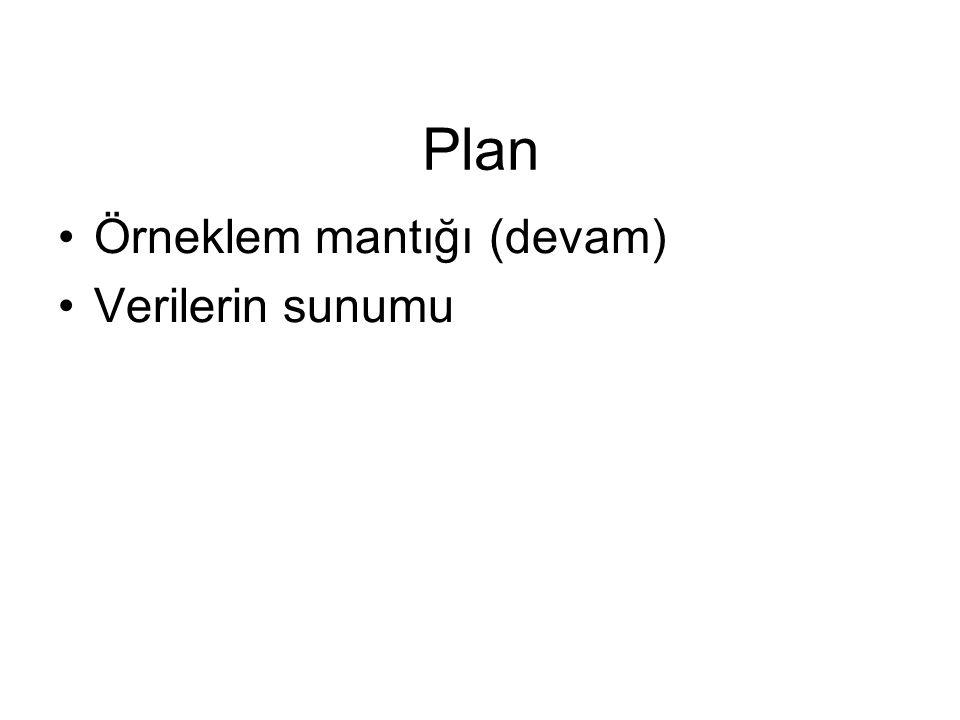 Plan Örneklem mantığı (devam) Verilerin sunumu