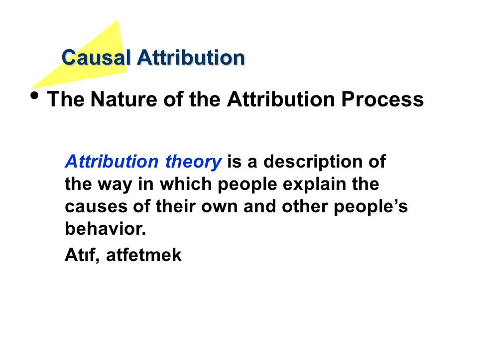 Causal Attribution The Nature of the Attribution Process Attribution theory is a description of the way in which people explain the causes of their ow