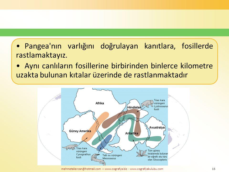 mehmetaliercan@hotmail.com – www.cografya.biz - www.cografyakulubu.com Pangea'nın varlığını doğrulayan kanıtlara, fosillerde rastlamaktayız. Aynı canl