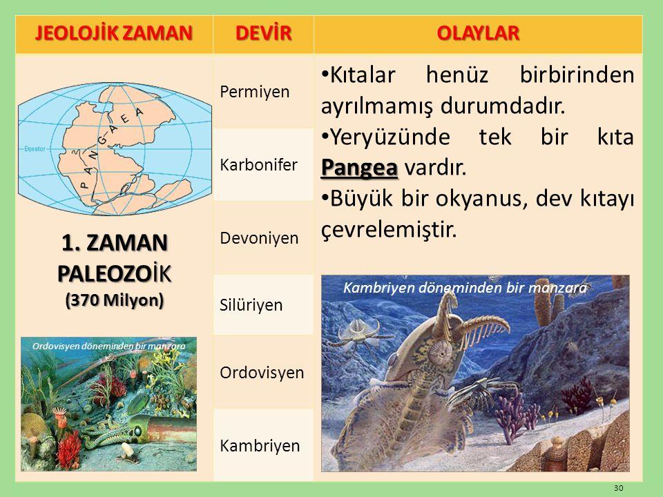 JEOLOJİK ZAMAN DEVİROLAYLAR 1. ZAMAN PALEOZOİK (370 Milyon) Permiyen Kıtalar henüz birbirinden ayrılmamış durumdadır. Pangea Yeryüzünde tek bir kıta P