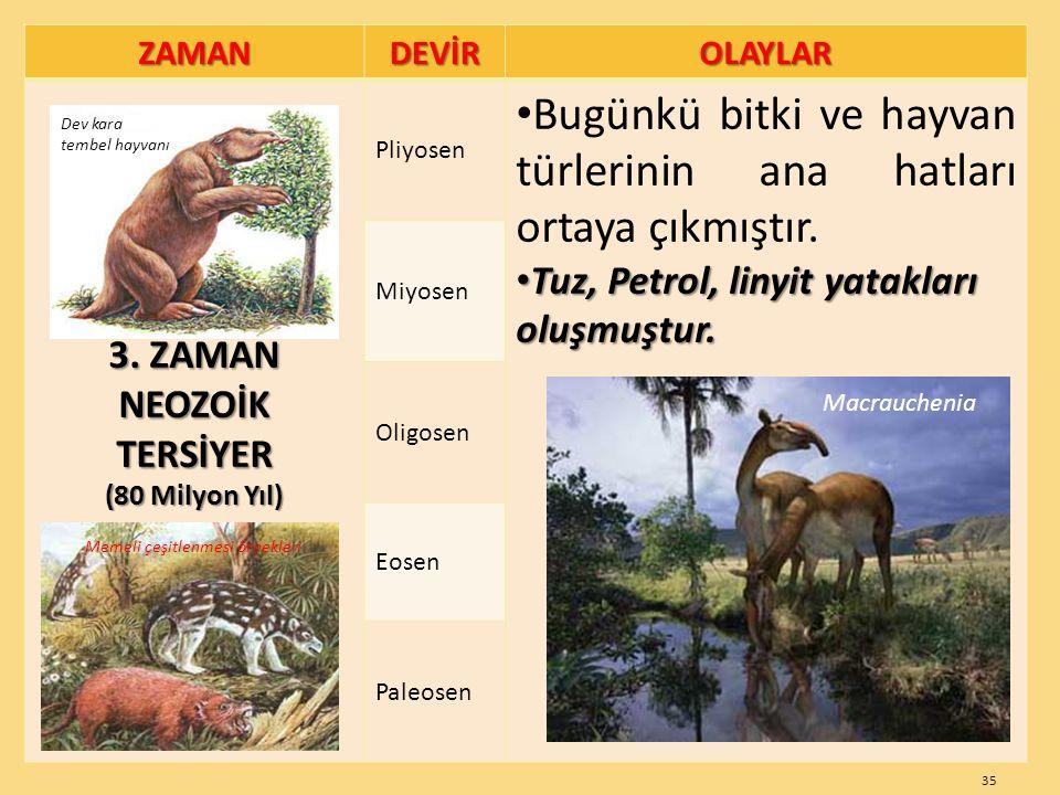 ZAMANDEVİROLAYLAR 3. ZAMAN NEOZOİKTERSİYER (80 Milyon Yıl) Pliyosen Bugünkü bitki ve hayvan türlerinin ana hatları ortaya çıkmıştır. Tuz, Petrol, liny