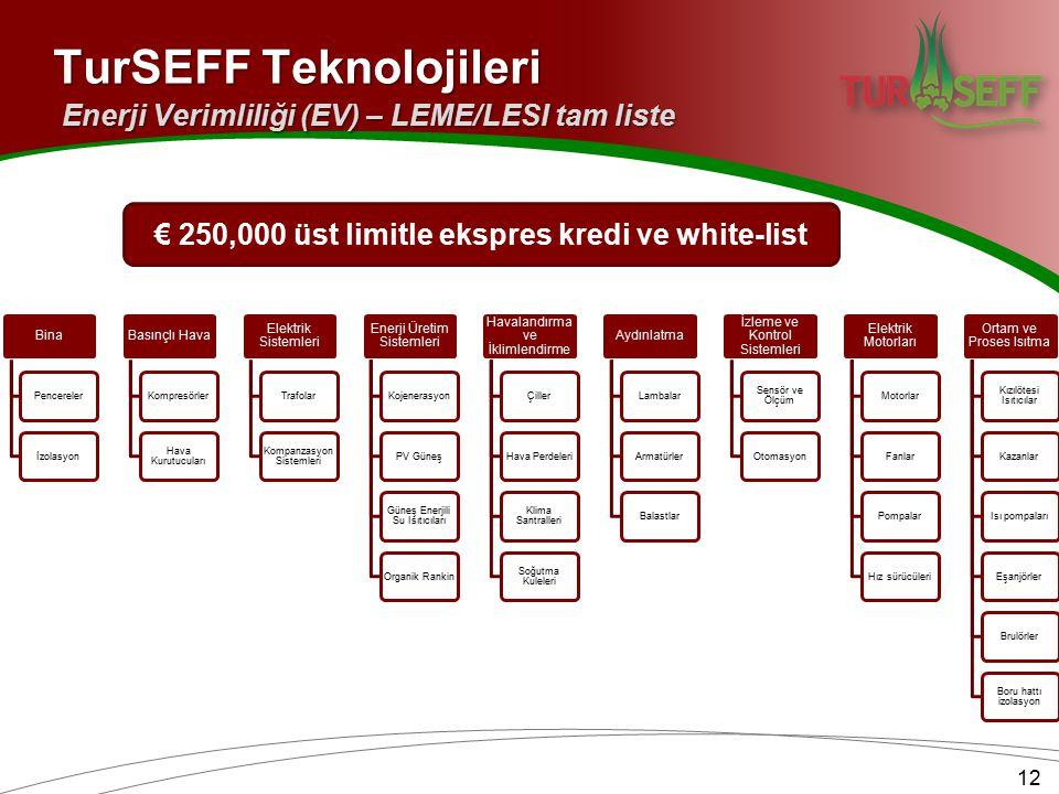 12 TurSEFF Teknolojileri Enerji Verimliliği (EV) – LEME/LESI tam liste Bina Pencerelerİzolasyon Basınçlı Hava Kompresörler Hava Kurutucuları Elektrik