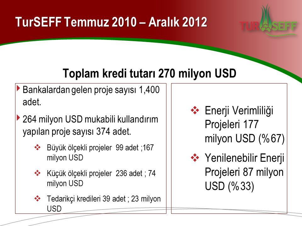 TurSEFF Temmuz 2010 – Aralık 2012 Toplam kredi tutarı 270 milyon USD ‣ Bankalardan gelen proje sayısı 1,400 adet. ‣ 264 milyon USD mukabili kullandırı