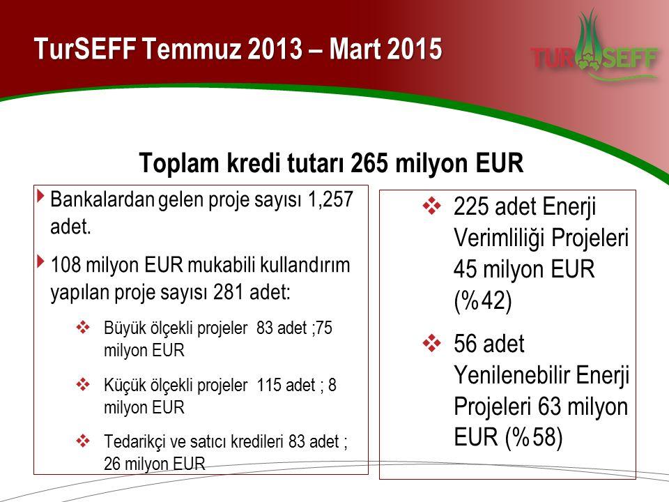 TurSEFF Temmuz 2013 – Mart 2015 Toplam kredi tutarı 265 milyon EUR ‣ Bankalardan gelen proje sayısı 1,257 adet. ‣ 108 milyon EUR mukabili kullandırım