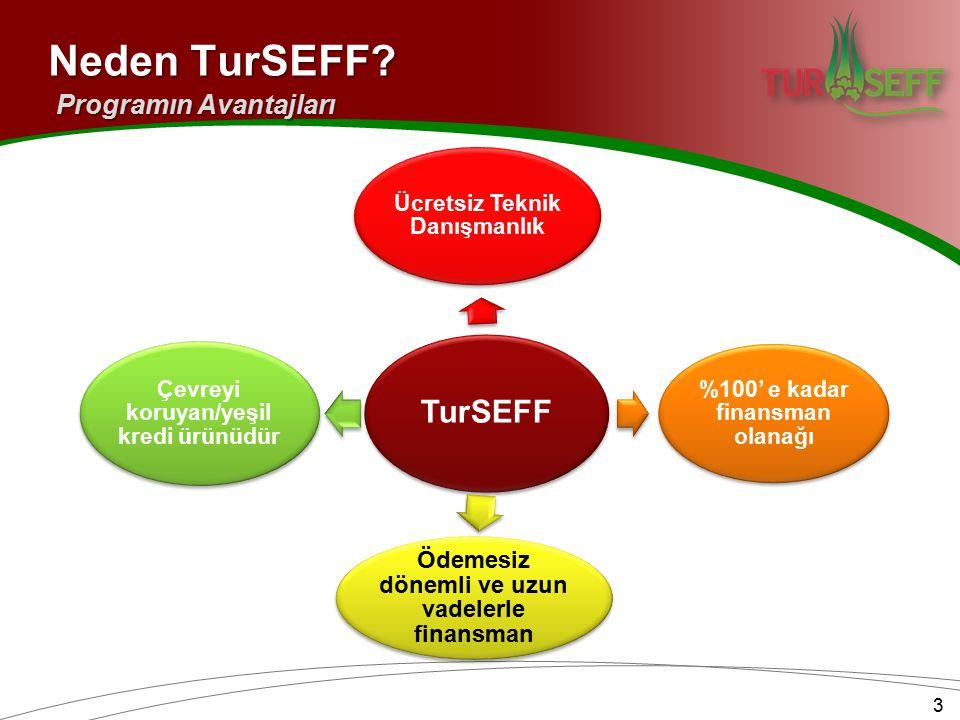 3 TurSEFF Ücretsiz Teknik Danışmanlık %100' e kadar finansman olanağı Ödemesiz dönemli ve uzun vadelerle finansman Çevreyi koruyan/yeşil kredi ürünüdür Neden TurSEFF.