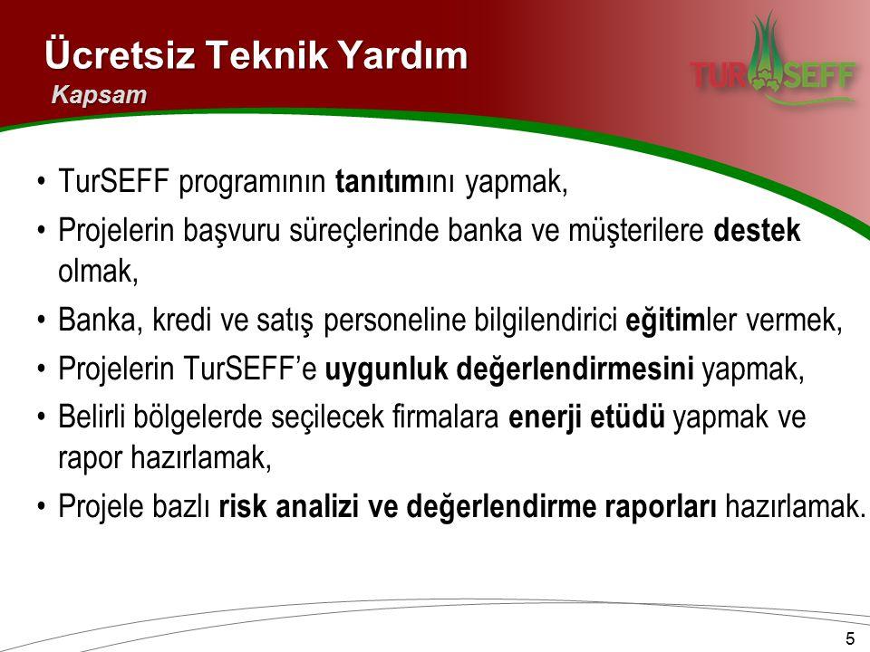 TurSEFF programının tanıtım ını yapmak, Projelerin başvuru süreçlerinde banka ve müşterilere destek olmak, Banka, kredi ve satış personeline bilgilendirici eğitim ler vermek, Projelerin TurSEFF'e uygunluk değerlendirmesini yapmak, Belirli bölgelerde seçilecek firmalara enerji etüdü yapmak ve rapor hazırlamak, Projele bazlı risk analizi ve değerlendirme raporları hazırlamak.