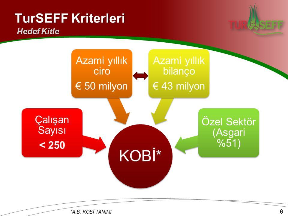 TurSEFF Kriterleri Hedef Kitle KOBİ* Çalışan Sayısı < 250 Azami yıllık ciro € 50 milyon Azami yıllık bilanço € 43 milyon Özel Sektör (Asgari %51) *A.B.