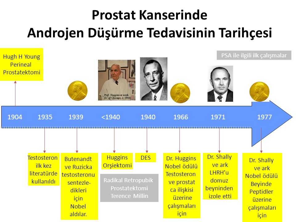 Prostat Kanserinde Androjen Düşürme Tedavisinin Tarihçesi 19351939<1940 Huggins Orşiektomi DES 1940 Dr. Huggins Nobel ödülü Testosteron ve prostat ca