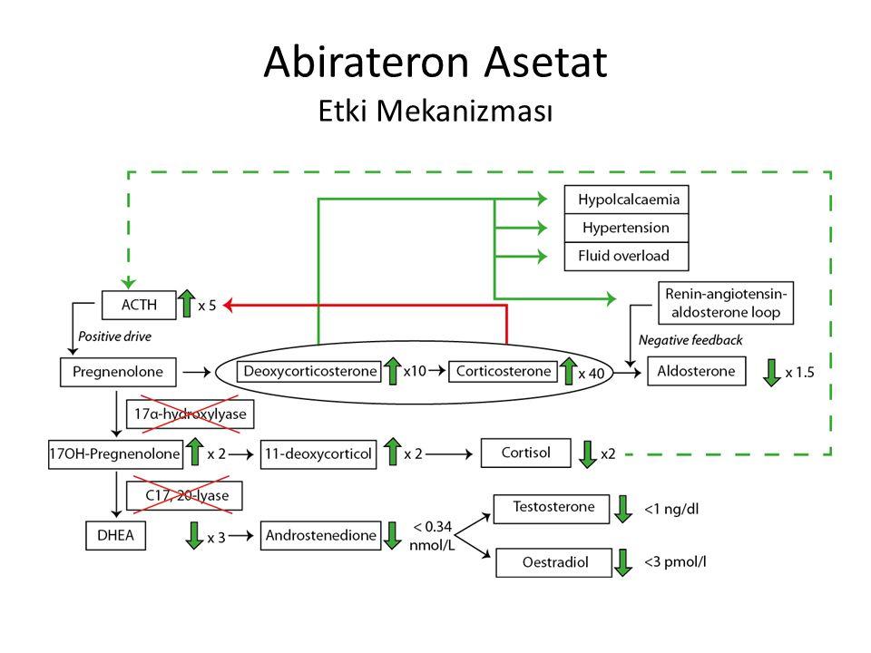 Abirateron Asetat Etki Mekanizması