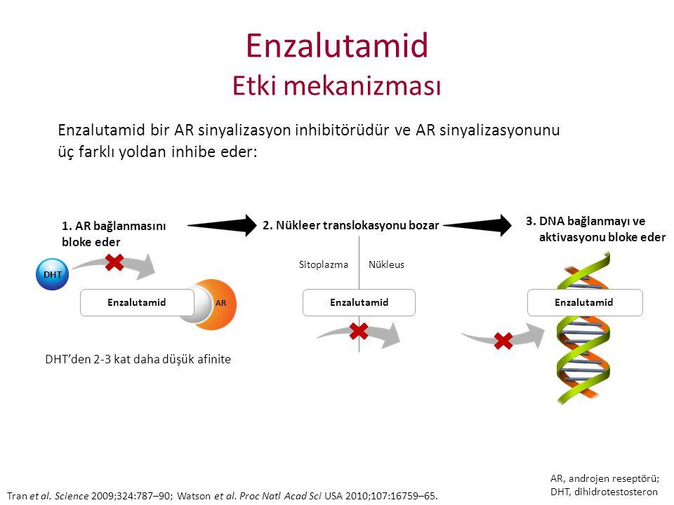 Enzalutamid Etki mekanizması Enzalutamid bir AR sinyalizasyon inhibitörüdür ve AR sinyalizasyonunu üç farklı yoldan inhibe eder: DHT 1. AR bağlanmasın
