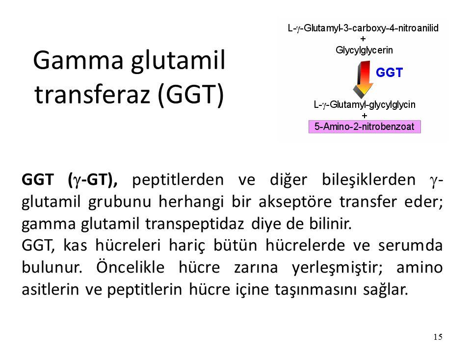 Gamma glutamil transferaz (GGT) 15 GGT (  -GT), peptitlerden ve diğer bileşiklerden  - glutamil grubunu herhangi bir akseptöre transfer eder; gamma glutamil transpeptidaz diye de bilinir.