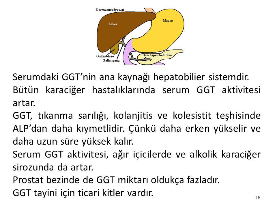 16 Serumdaki GGT'nin ana kaynağı hepatobilier sistemdir.