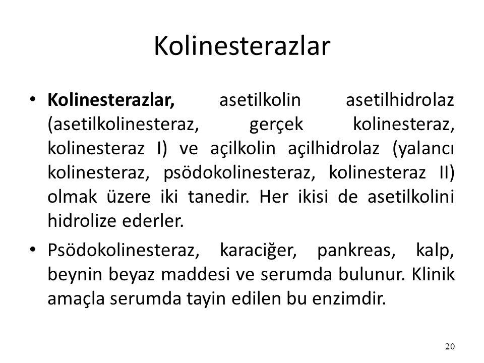 Kolinesterazlar Kolinesterazlar, asetilkolin asetilhidrolaz (asetilkolinesteraz, gerçek kolinesteraz, kolinesteraz I) ve açilkolin açilhidrolaz (yalancı kolinesteraz, psödokolinesteraz, kolinesteraz II) olmak üzere iki tanedir.