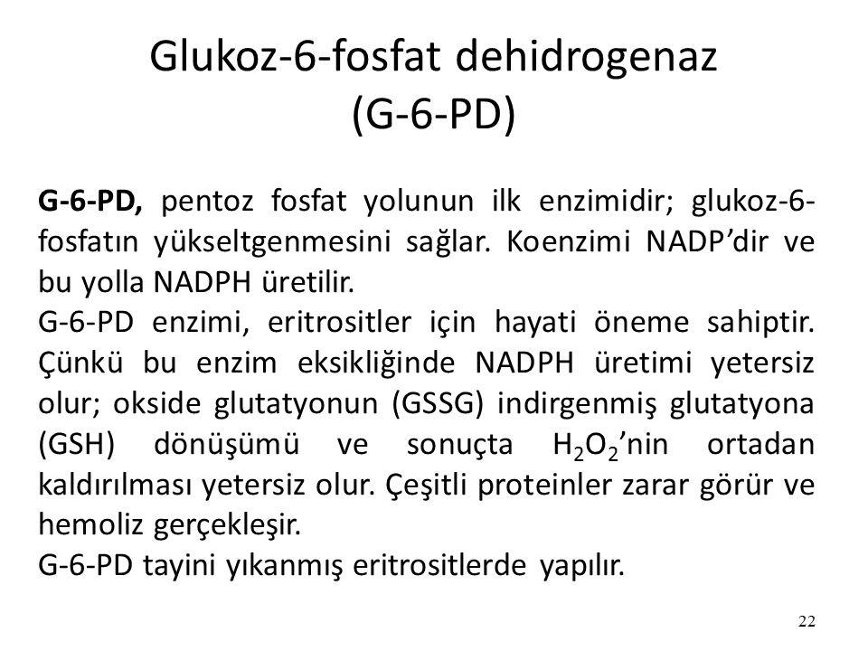 Glukoz-6-fosfat dehidrogenaz (G-6-PD) 22 G-6-PD, pentoz fosfat yolunun ilk enzimidir; glukoz-6- fosfatın yükseltgenmesini sağlar.