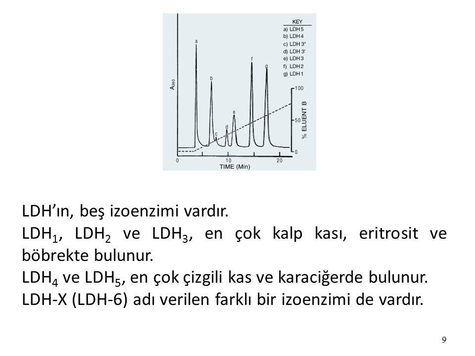 9 LDH'ın, beş izoenzimi vardır.