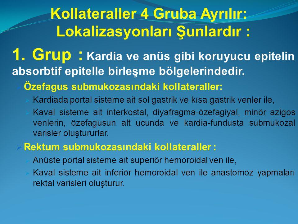 Kollateraller 4 Gruba Ayrılır: Lokalizasyonları Şunlardır : 1. Grup : Kardia ve anüs gibi koruyucu epitelin absorbtif epitelle birleşme bölgelerindedi