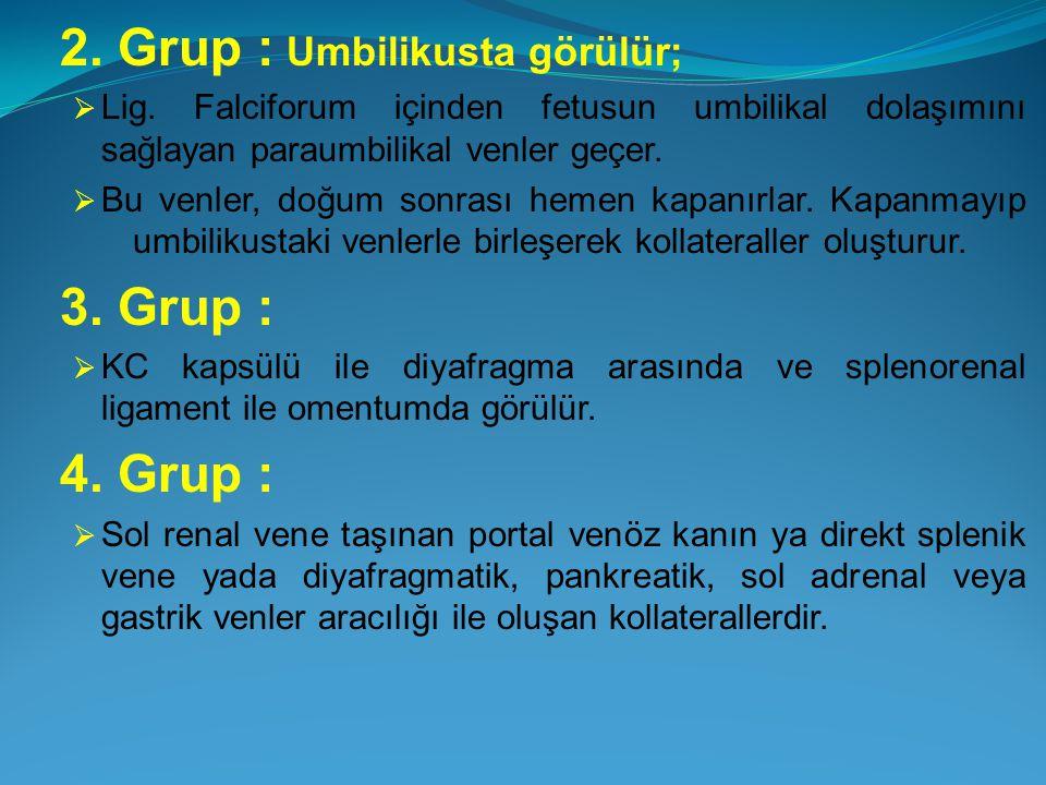 2. Grup : Umbilikusta görülür;  Lig. Falciforum içinden fetusun umbilikal dolaşımını sağlayan paraumbilikal venler geçer.  Bu venler, doğum sonrası
