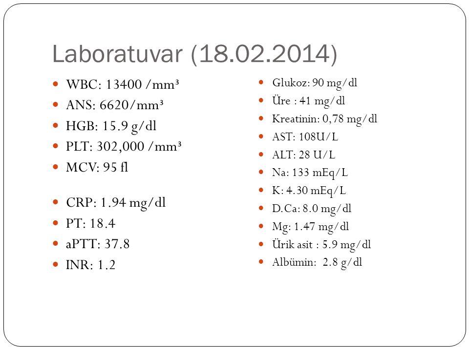 Laboratuvar (18.02.2014) WBC: 13400 /mm³ ANS: 6620/mm³ HGB: 15.9 g/dl PLT: 302,000 /mm³ MCV: 95 fl CRP: 1.94 mg/dl PT: 18.4 aPTT: 37.8 INR: 1.2 Glukoz: 90 mg/dl Üre : 41 mg/dl Kreatinin: 0,78 mg/dl AST: 108U/L ALT: 28 U/L Na: 133 mEq/L K: 4.30 mEq/L D.Ca: 8.0 mg/dl Mg: 1.47 mg/dl Ürik asit : 5.9 mg/dl Albümin: 2.8 g/dl