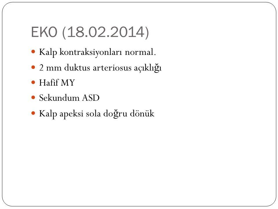 EKO (18.02.2014) Kalp kontraksiyonları normal.