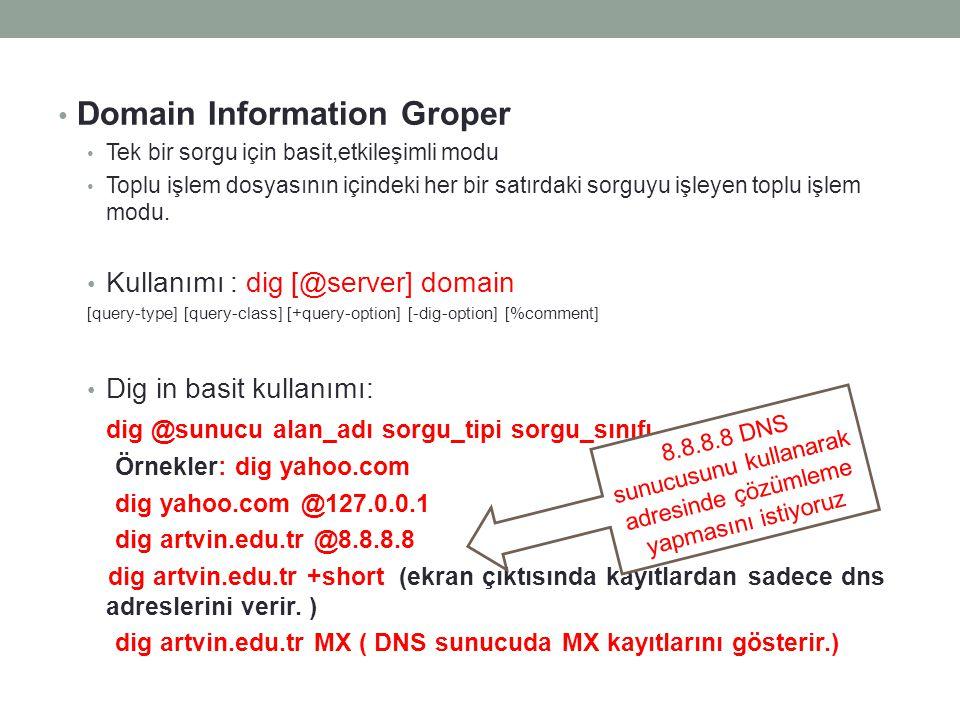 Domain Information Groper Tek bir sorgu için basit,etkileşimli modu Toplu işlem dosyasının içindeki her bir satırdaki sorguyu işleyen toplu işlem modu