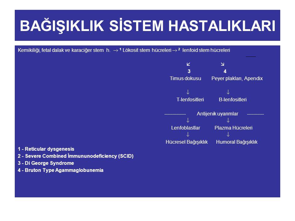 BAĞIŞIKLIK SİSTEM HASTALIKLARI Kemikiliği, fetal dalak ve karaciğer stem h.  1 Lökosit stem hücreleri  2 lenfoid stem hücreleri   3 4 Timus dokusu