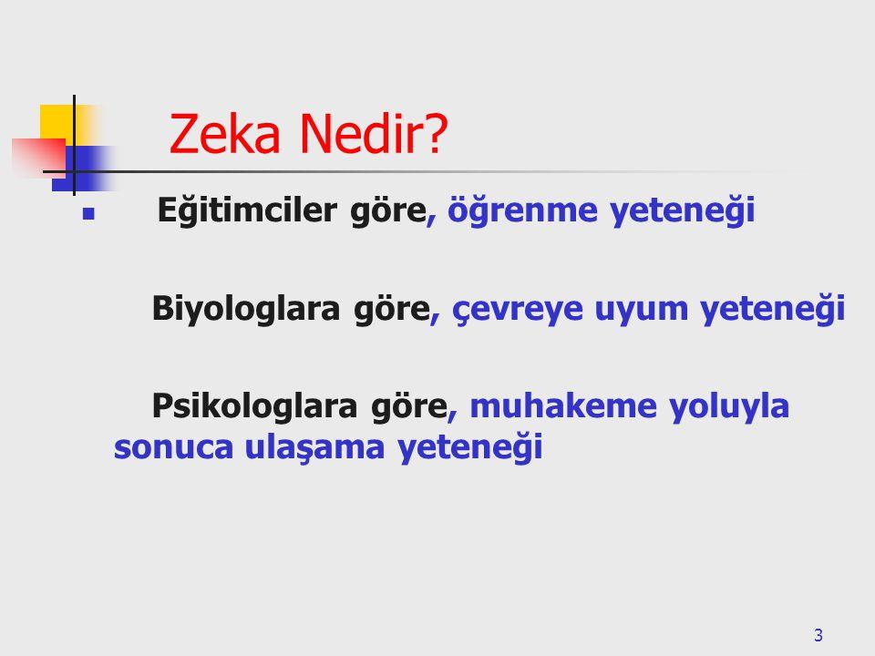 3 Zeka Nedir.