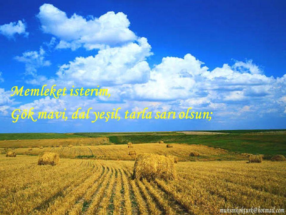 Memleket isterim, Gök mavi, dal yeşil, tarla sarı olsun;