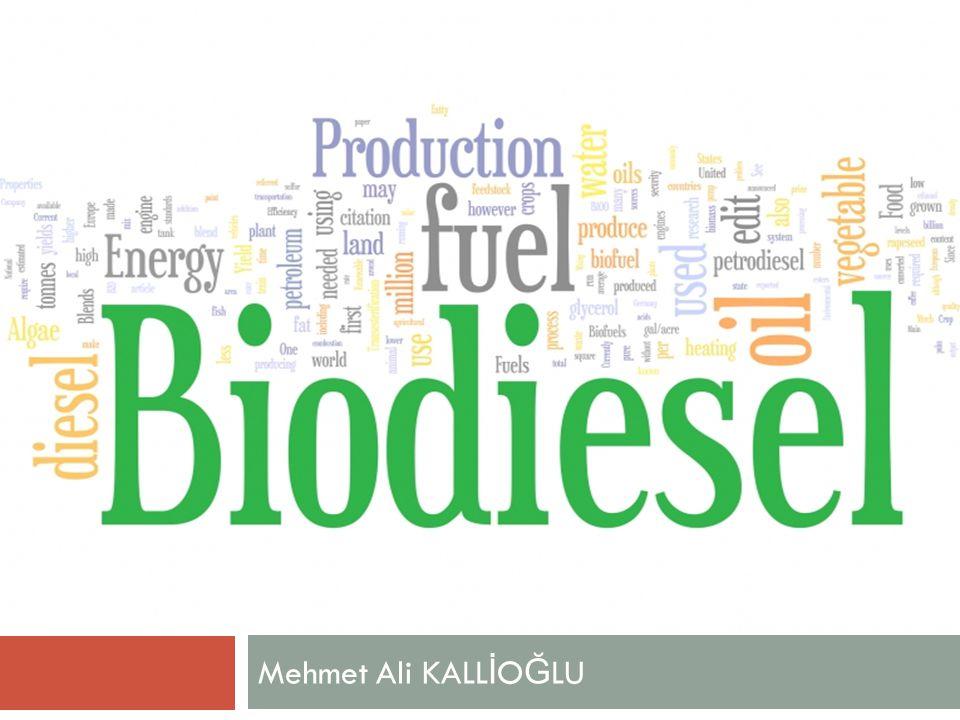  Saf biyodizel (B100) kullanımında motor malzemelerinin (özellikle yakıt sistemindeki hortum, bağlantı elemanı ve contalar) biyodizele uygun seçilmesi, uygun değilse değiştirilmesi gerekmektedir.