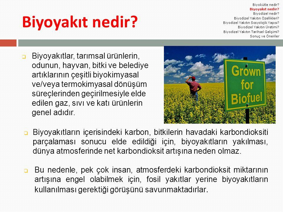 Biyoyakıt nedir?  Biyoyakıtlar, tarımsal ürünlerin, odunun, hayvan, bitki ve belediye artıklarının çeşitli biyokimyasal ve/veya termokimyasal dönüşüm