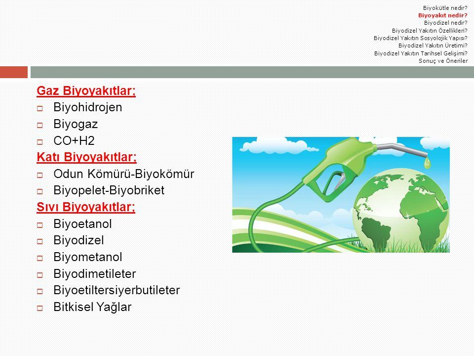 Gaz Biyoyakıtlar;  Biyohidrojen  Biyogaz  CO+H2 Katı Biyoyakıtlar;  Odun Kömürü-Biyokömür  Biyopelet-Biyobriket Sıvı Biyoyakıtlar;  Biyoetanol 