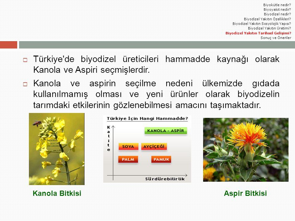  Türkiye'de biyodizel üreticileri hammadde kaynağı olarak Kanola ve Aspiri seçmişlerdir.  Kanola ve aspirin seçilme nedeni ülkemizde gıdada kullanıl