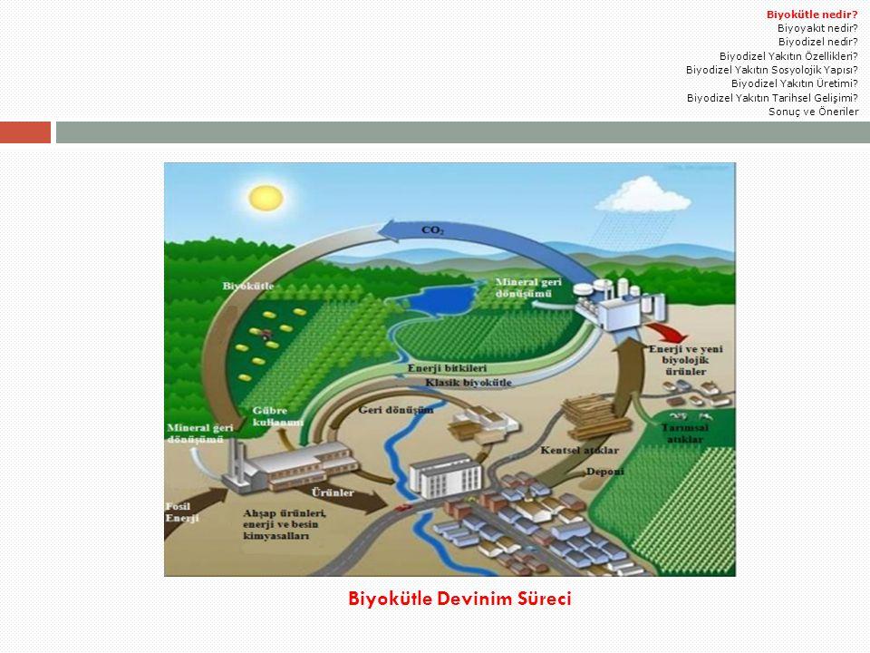 3.Ayırma:  Reaksiyon tamamlandıktan sonra iki ana ürün gliserin ve biyodizeldir.