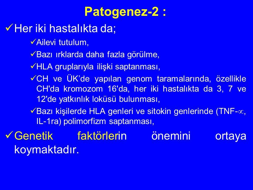 Patogenez-2 : Her iki hastalıkta da; Ailevi tutulum, Bazı ırklarda daha fazla görülme, HLA gruplarıyla ilişki saptanması, CH ve ÜK'de yapılan genom ta