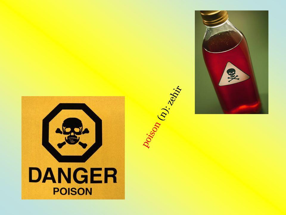 poison (n): zehir