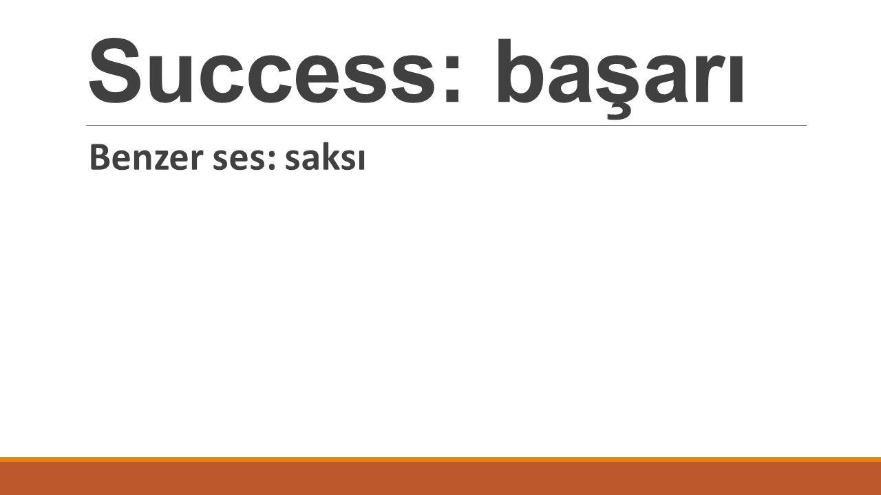 Success: başarı Benzer ses: saksı