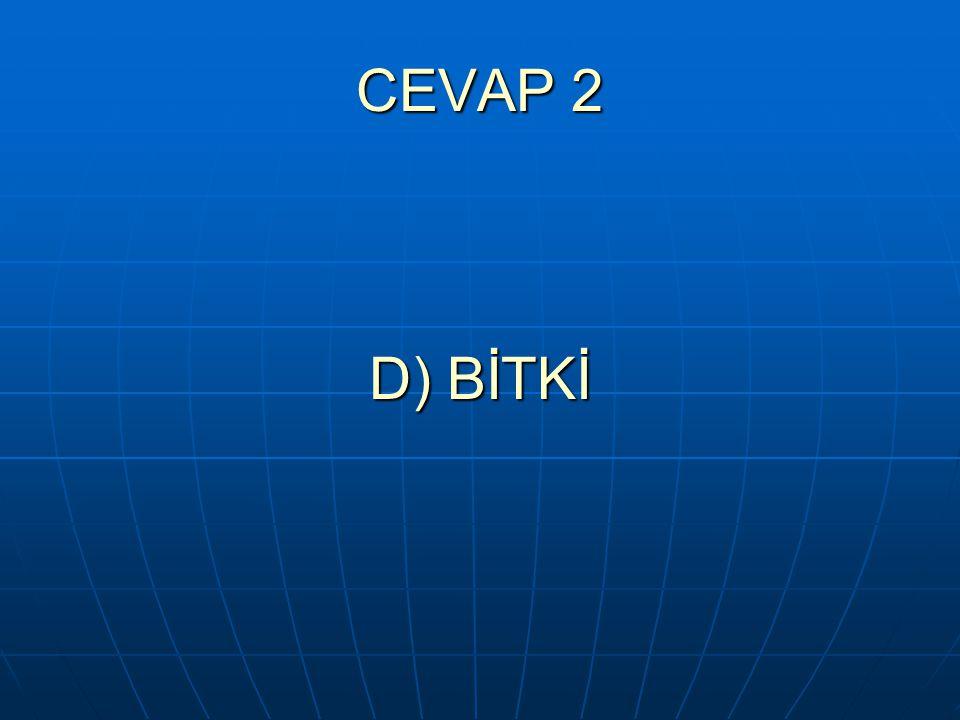 CEVAP 2 D) BİTKİ