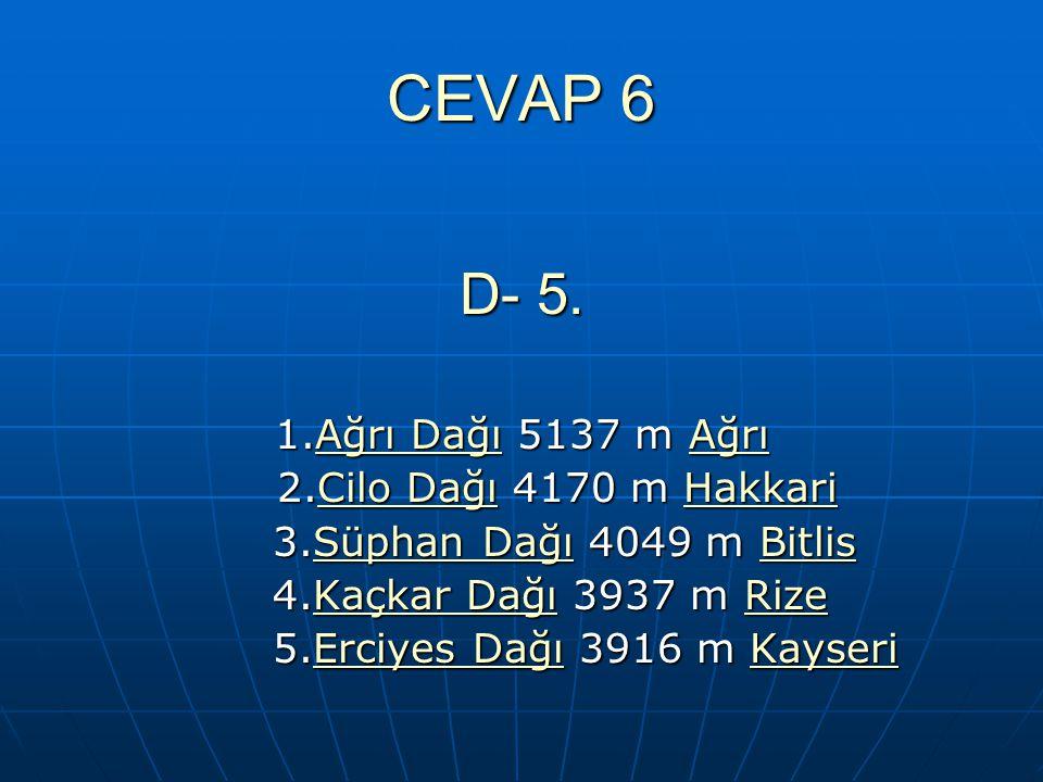 CEVAP 6 D- 5. 1.Ağrı Dağı 5137 m Ağrı Ağrı DağıAğrı DağıAğrı 2.Cilo Dağı 4170 m Hakkari 2.Cilo Dağı 4170 m HakkariCilo DağıHakkariCilo DağıHakkari 3.S